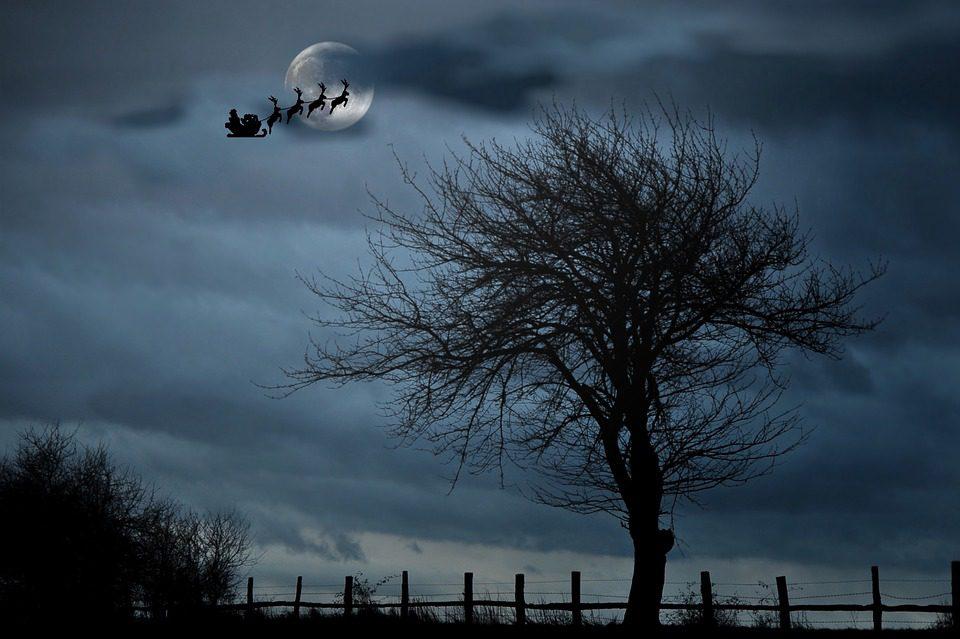 Père Noël et ses rennes