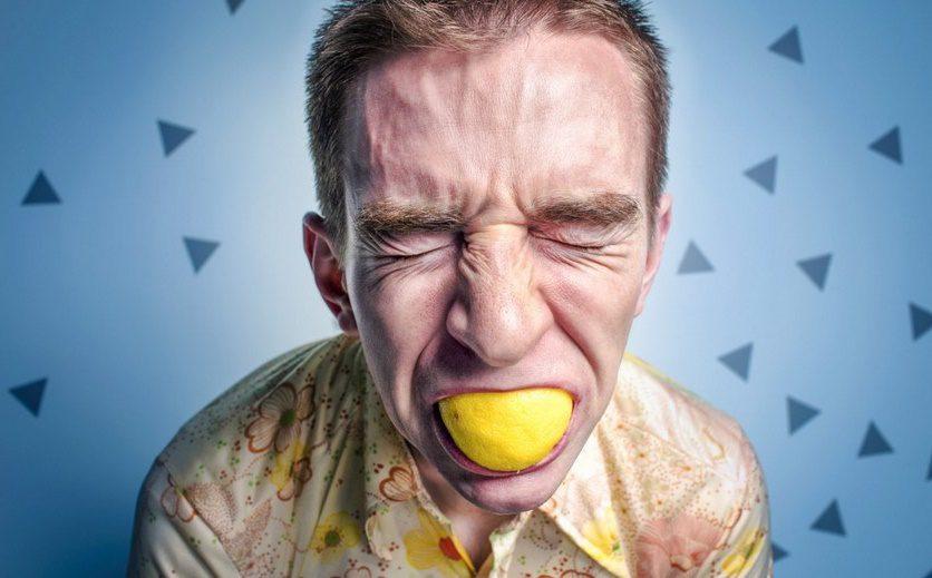 Prébiotiques : une piste intéressante pour vaincre le stress important