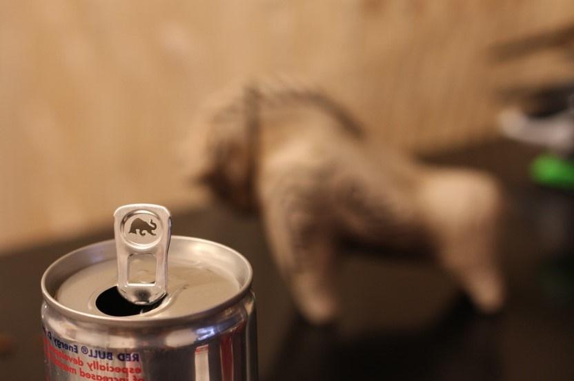 Le mélange alcool et boissons énergisantes reste un cocktail à risque