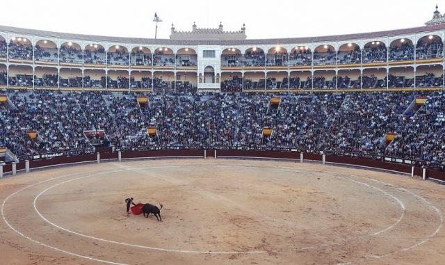 Une arène avec un taureau