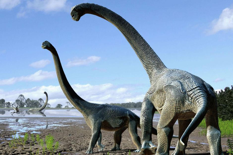 Dinosaure australien