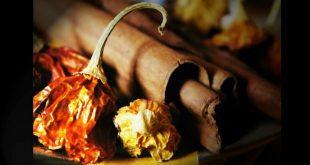 A découvrir, les meilleurs brûleurs de graisse naturels à privilégier