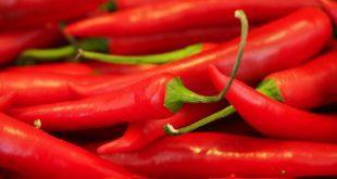 Le piment rouge aurait la capacité de soigner nos artères