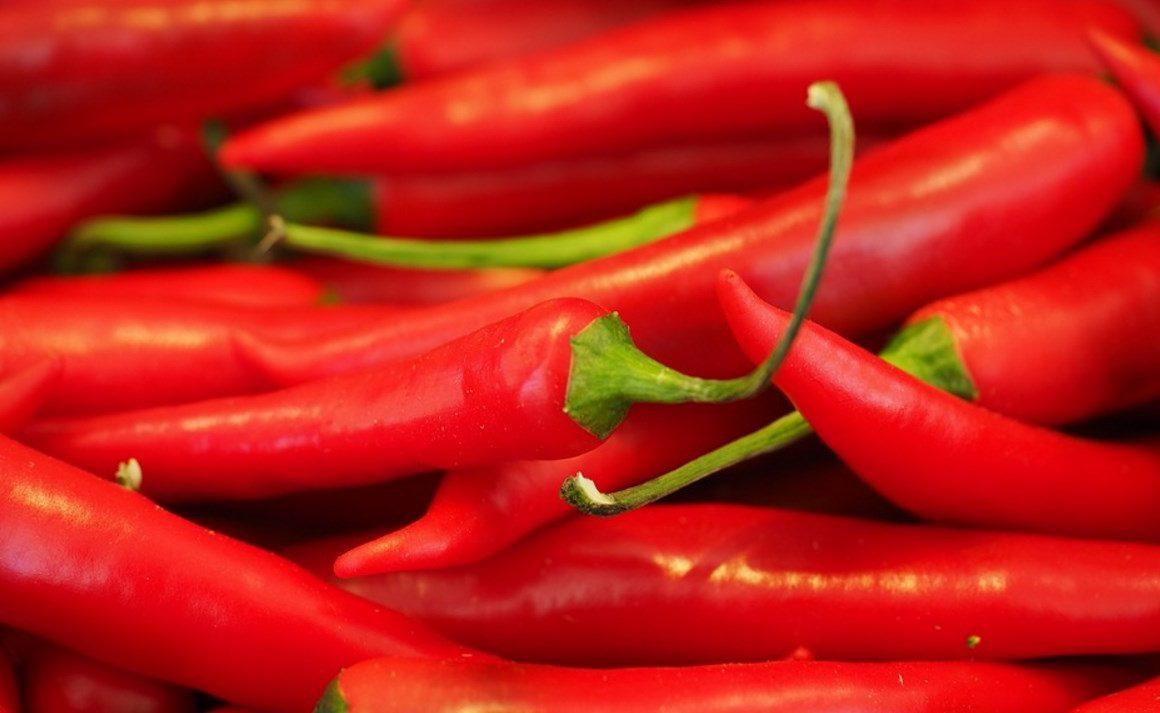 Des piments rouges