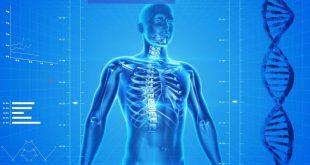 Ostéoporose : sous-diagnostiquée, celle maladie est dangereuse