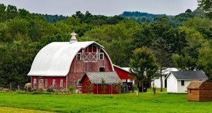 Les Amish vivent plus longtemps, en meilleure santé, ont-ils trouvé le secret de la longévité ?